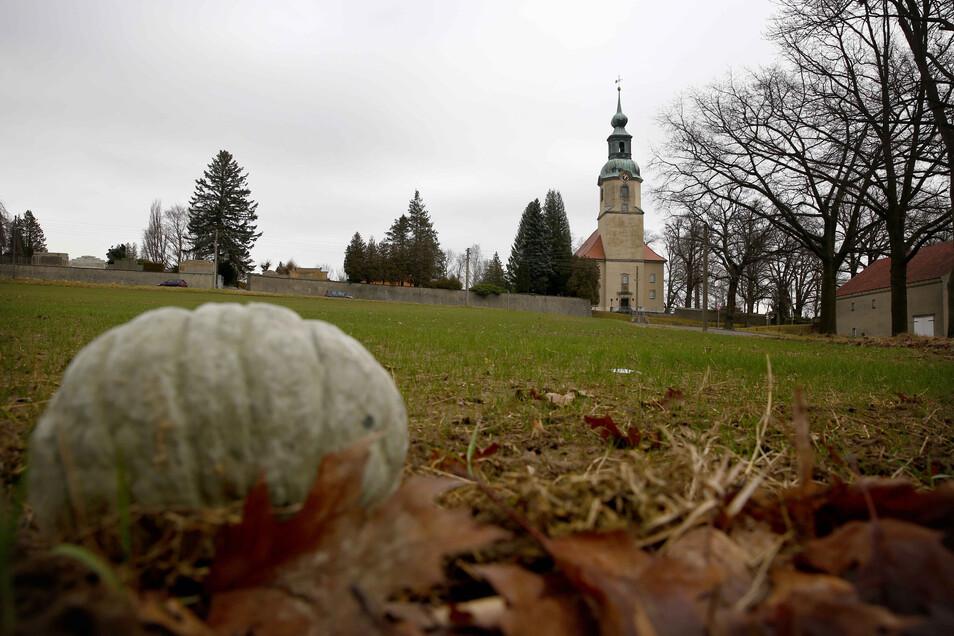 Auf dieser Wiese in Großröhrsdorf – gegenüber der barocken Stadtkirche – soll ein Wohngebiet entstehen.