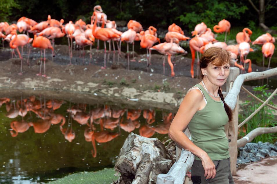 Revierleiterin Kerstin Kunadt betreut Flamingos, Rote Sichler und Rosalöffler in der neuen, begehbaren Voliere.