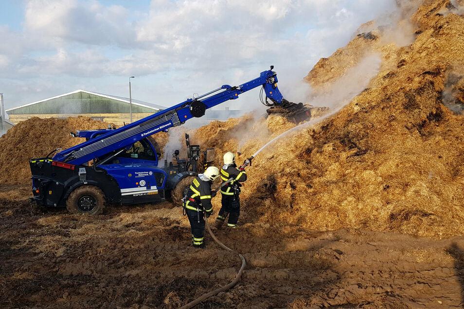 Auch am Vormittag laufen die Löscharbeiten des Strohlagers in Berbersdorf. Das THW unterstützt die Feuerwehr mit Teleskop- und Radladern.