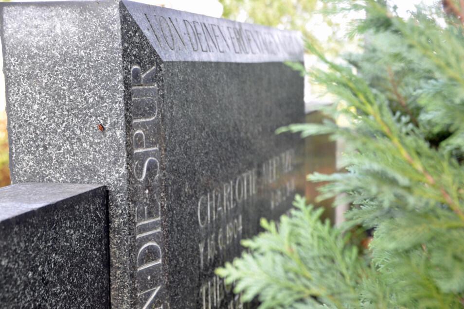 Ihre letzte Ruhe fand Charlotte Meentzen, die im Alter von nur 35 Jahren starb, auf dem Friedhof in Moritzburg bei Dresden.