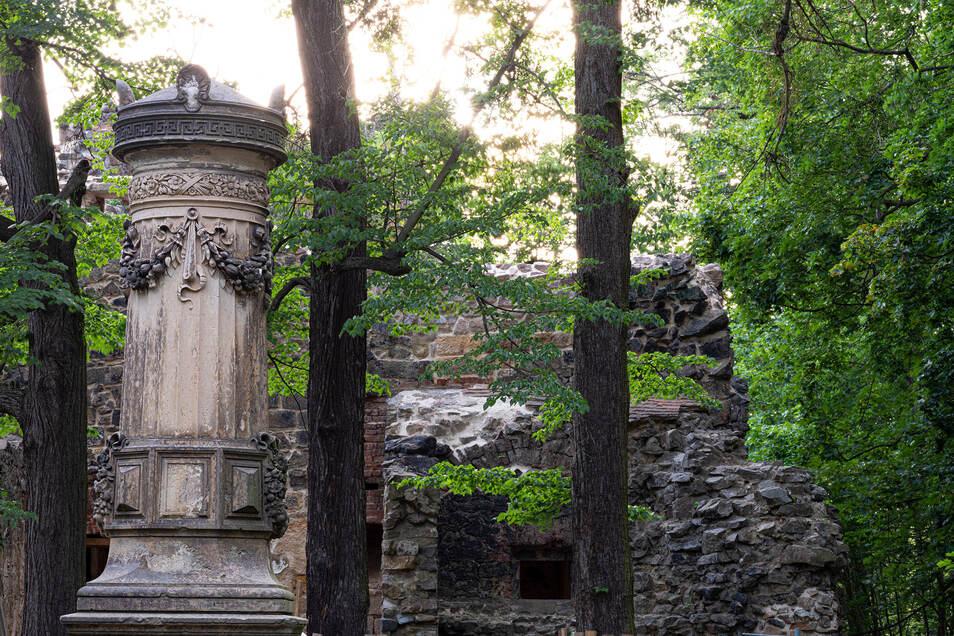 Weil die Romantiker Ruinen nicht immer an schönen Aussichtspunkten vorfanden, schufen sie sie eben selbst. So wie die Ruine über dem Friedrichsgrund in Pillnitz, zu der man ein bisschen emporkraxeln muss.
