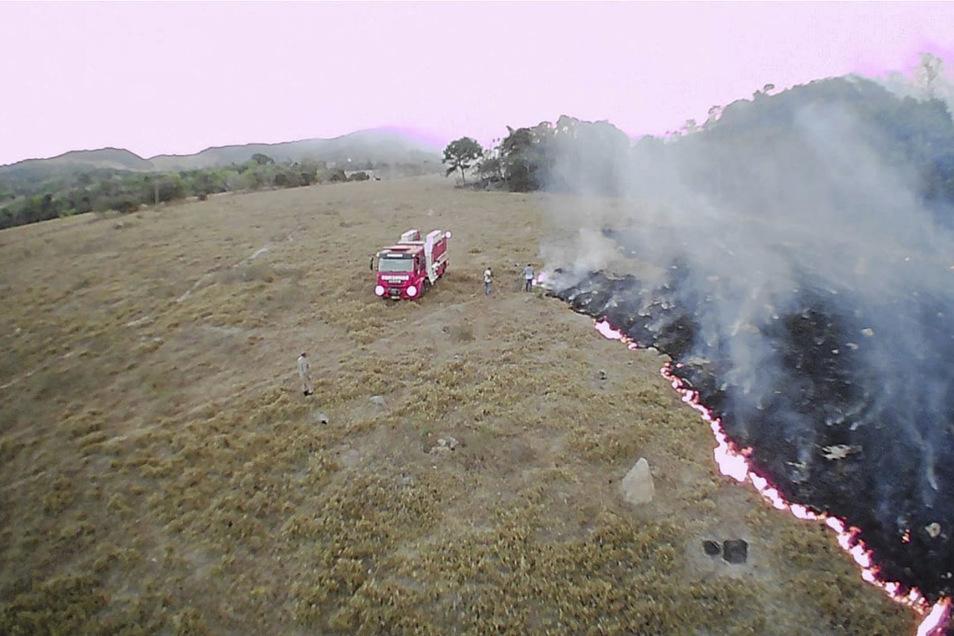Insgesamt sollen 72.843 Brände registriert worden sein.