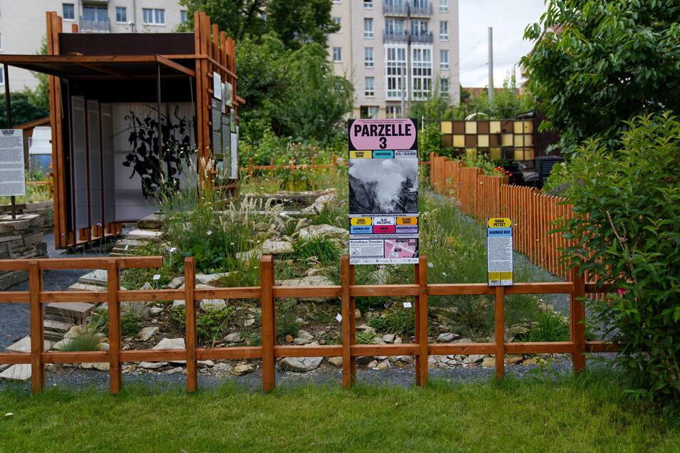 Das Kunsthaus Dresden hat in der Flora I eine Außenstelle etabliert. Die anfängliche Skepsis der Kleingärtner ist längst verflogen.
