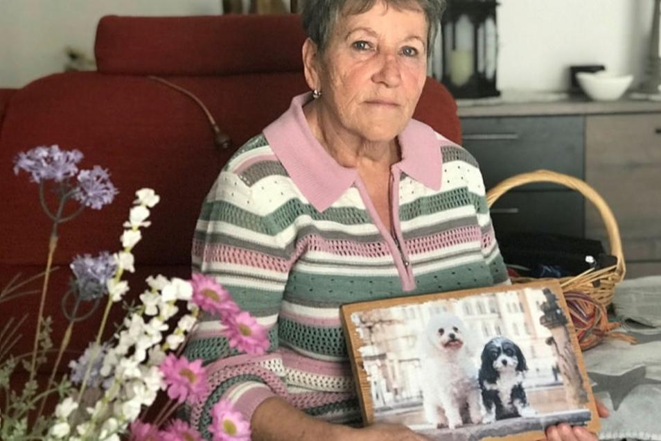 Rita Iffland bleiben als Erinnerung an ihre beiden Hunde nur Fotos. Ein rücksichtsloser Autofahrer hat ihre Lieblinge totgefahren. Gefasst ist er noch immer nicht.
