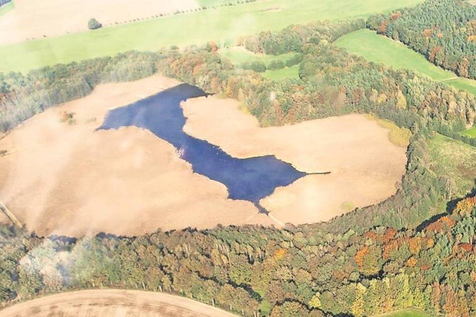 Ein bemerkenswerter Blick aus dem Flugzeug. Ludwig Sachße machte das Foto bei einem Rundflug vor zwei Jahren. Was aussieht wie Sand, ist der breite Schilfgürtel, der sich mittlerweile um das Gewässer gebildet hat. Im Prinzip wächst der Litzenteich immer m