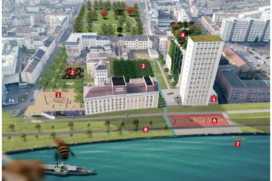 Die Vision für das Riesaer Muskator-Gelände an der Elbe: 1 Große Terrasse, 2 Promenade mit Garten, 3 Biomasse-Plantage, 4 Blockheizkraftwerk, 5 Sitztreppen, 6 Klimapfad, 7 Dampfer-Anlegestelle, 8 durchgehender Elberadweg