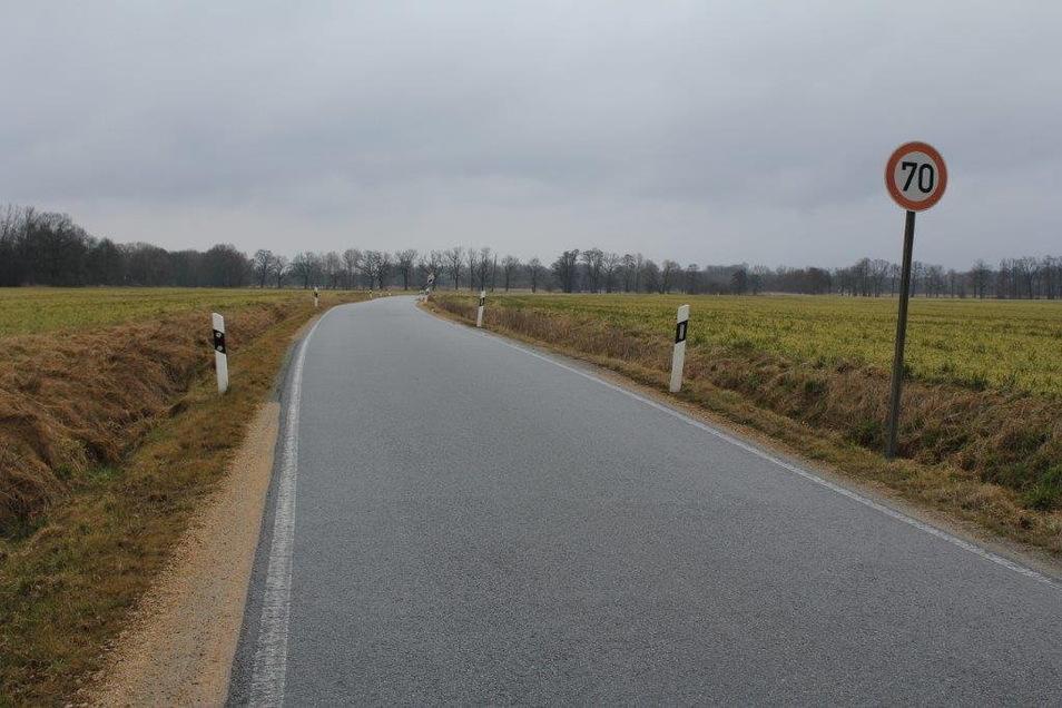 Bis zum vergangenen Jahr stand zwischen Guttau und Lömischau kein Baum am Wegesrand.