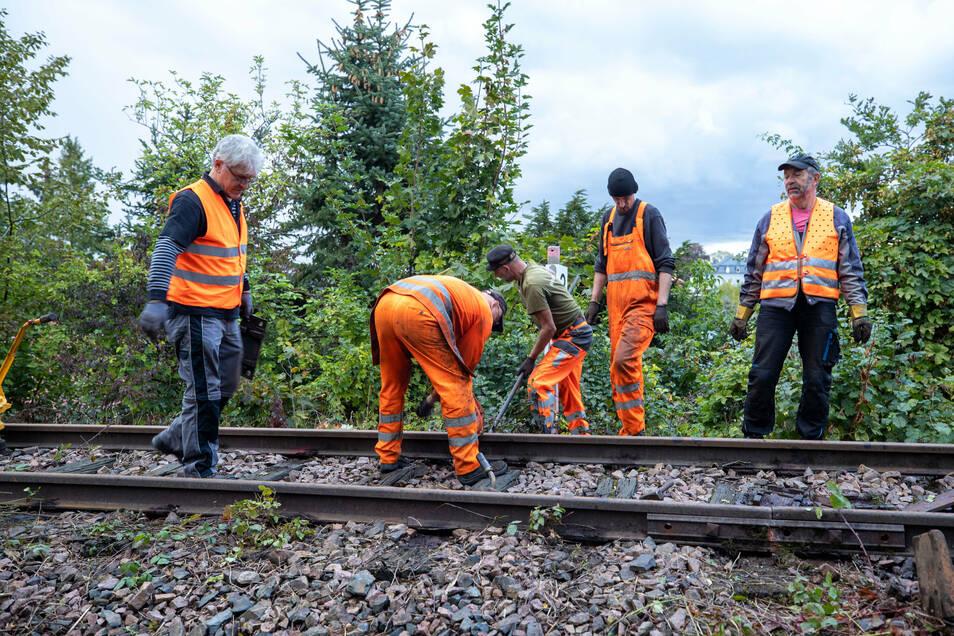 Die Männer vom Windbergbahn-Verein reparieren bei Kilometer 3,4 die historische Strecke.