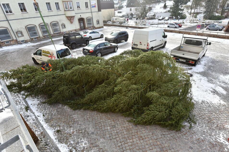Der umgekippte Weihnachtsbaum.