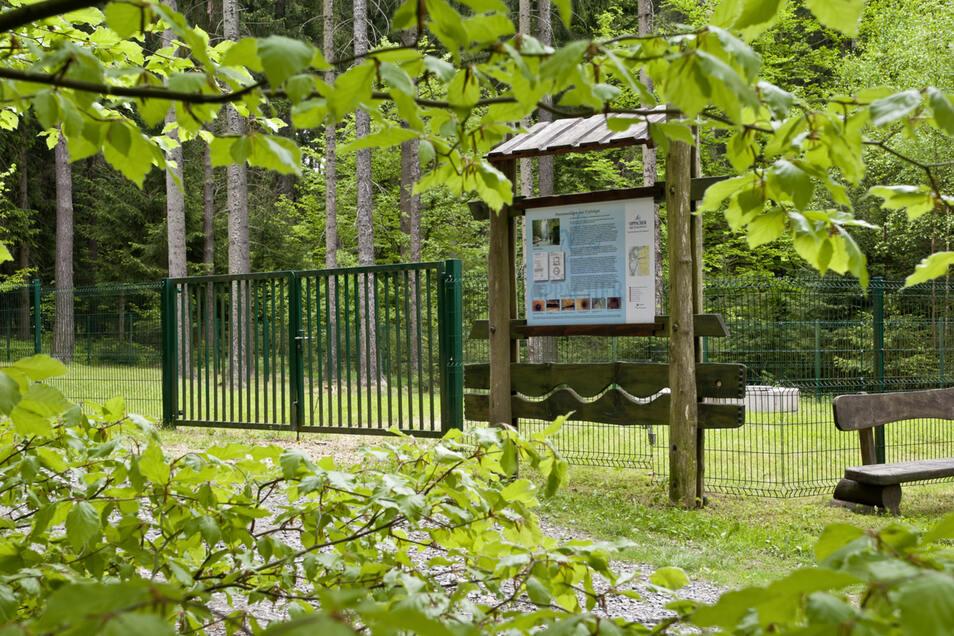 Acht Schaustafeln informieren entlang des Pfades zur Herstellung des Oppacher Mineralwasser sowie zur Natur und Landschaft des Oberlausitzer Berglandes.