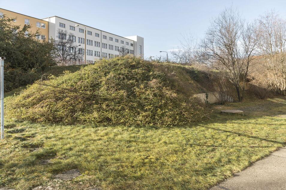 Von außen wirkt der Bunker nahe dem Volkshaus (Hintergrund) wie ein sanfter, grüner Hügel.