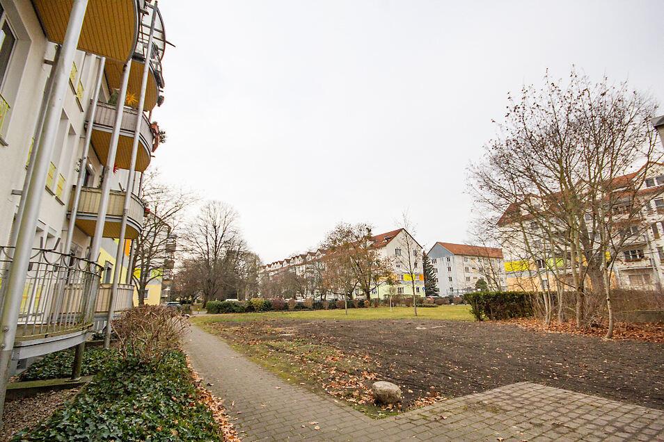 """Die Eigentümergemeinschaft """"Am Park"""" in Hoyerswerdas WK I besteht aus vier Wohnblöcken an der Clara-Zetkin- und der Franz-Mehring-Straße."""