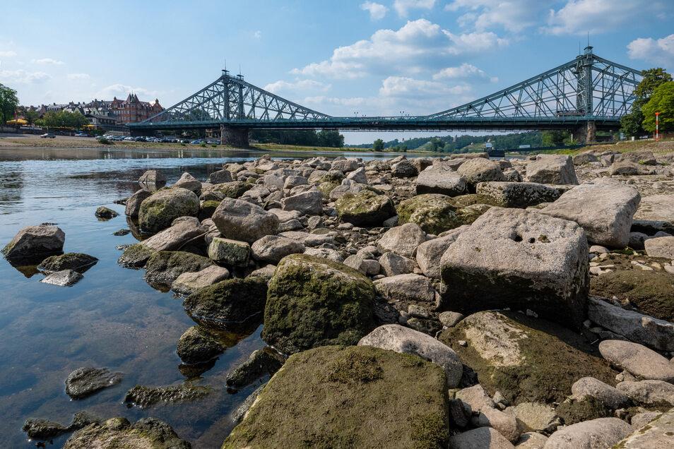 Die Elbe wird künftig häufiger so aussehen, sagen Klimaforscher.