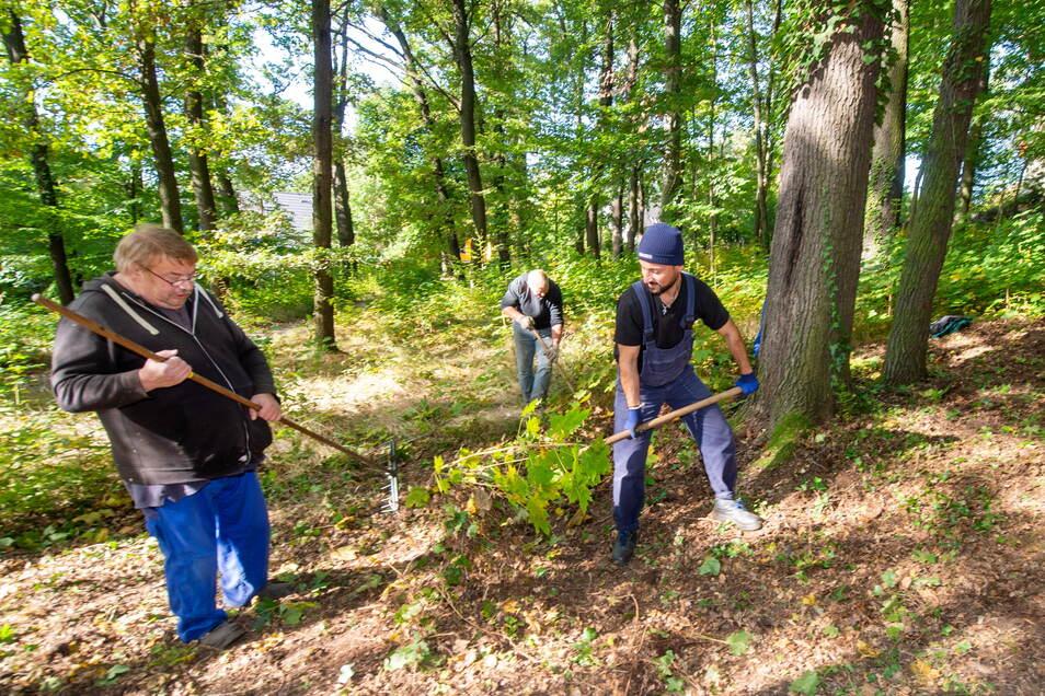 Mitarbeiter der Produktionsschule Moritzburg haben im Sommer schon ordentlich aufgeräumt im Kurpark von Friedewald.
