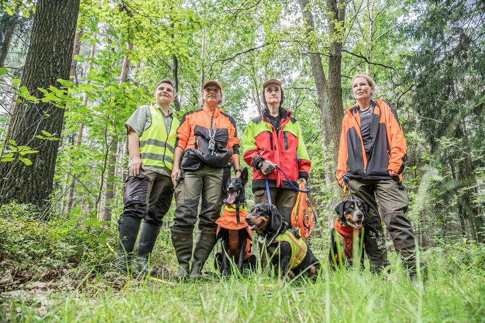 Katrin Lattermann vom Kreisforstamt sowie Michaela Botz mit Uschi, Gabriele Ott mit Babett und Stefanie Loose mit Toni (von links) fanden bei ihrer Suche in der vergangenen Woche kein verendetes Wildschwein.
