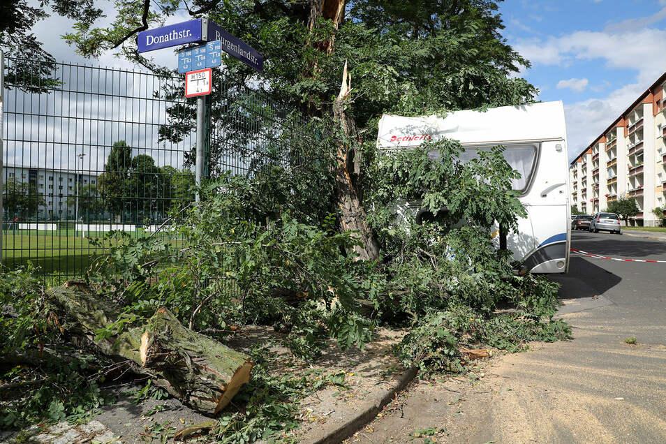 An der Kreuzung Burgenlandstraße/Donathstraße parkte ein Wohnwagen. Dieser wurde durch einen Baum beschädigt.