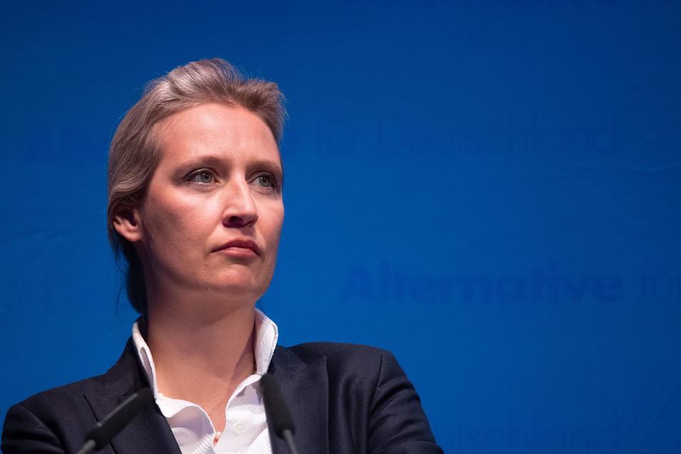 Für die größte rechtwidrige Spende muss sich Fraktionschefin Alice Weidel verantworten.