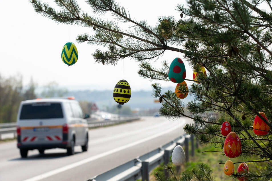 Der Baum an der Sachsenbrücke bei Pirna ist wieder mit Ostereiern geschmückt. Schön!