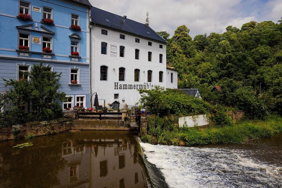 Die Hammermühle ist die letzte funktionstüchtige Mühle im Bautzener Spreetal. Einst standen rund um die Stadt 28 dieser Industriebauten. Heute wird im Denkmal Senf, Öl und Heilerde hergestellt.