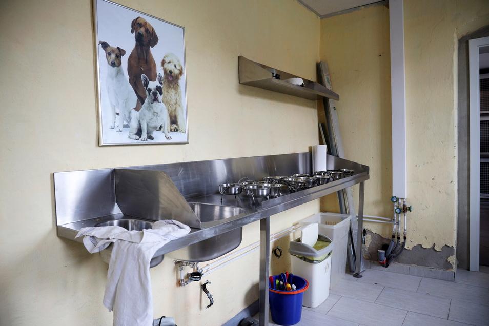 Nebenan gibt es ein Behandlungszimmer für den Tierarzt.