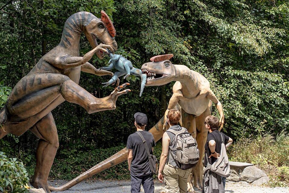 Spannende Szenen aus einer längst vergangenen Zeit können die Besucher im Saurierpark Kleinwelka entdecken. Doch sie dürfen auch selbst aktiv werden.