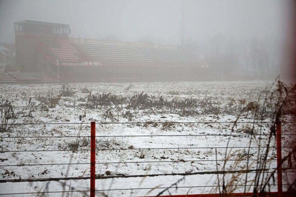 Schnee und Nebel verdecken nur teilweise, dass das Grube-Stadion im Herzen Riesas langsam zuwächst.