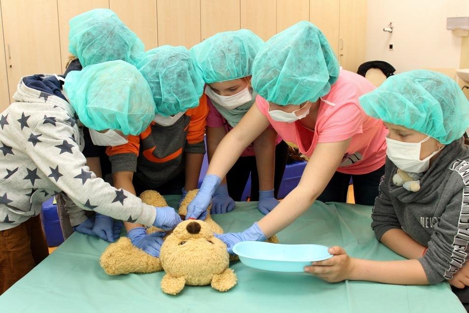 Not-OP am Plüschteddy: Mit Mundschutz, Haube und Handschuhen lernten Viertklässler aus Struppen spielerisch die Arbeit im Krankenhaus kennen.