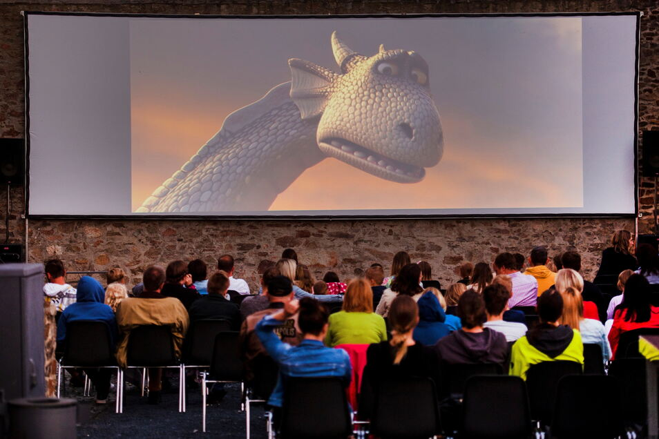 Open-Air-Kino im Schlossgraben in Großenhain: Zur nachgeholten Kindertagsfete am Sonnabend kamen 87 Gäste - darunter viele Kinder.