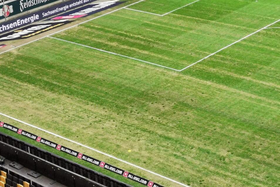 Der Rasen im Rudolf-Harbig-Stadion hat an einigen Stellen tiefe Löcher und ist grundsätzlich in keinem guten Zustand.