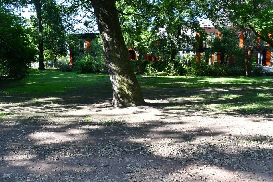 Weite Teile der großen Rasenflächen sind abgenutzt, eine Wiese wächst hier nicht mehr. An diesen Stellen soll robuster Roll- oder Sportrasen zum Einsatz kommen.