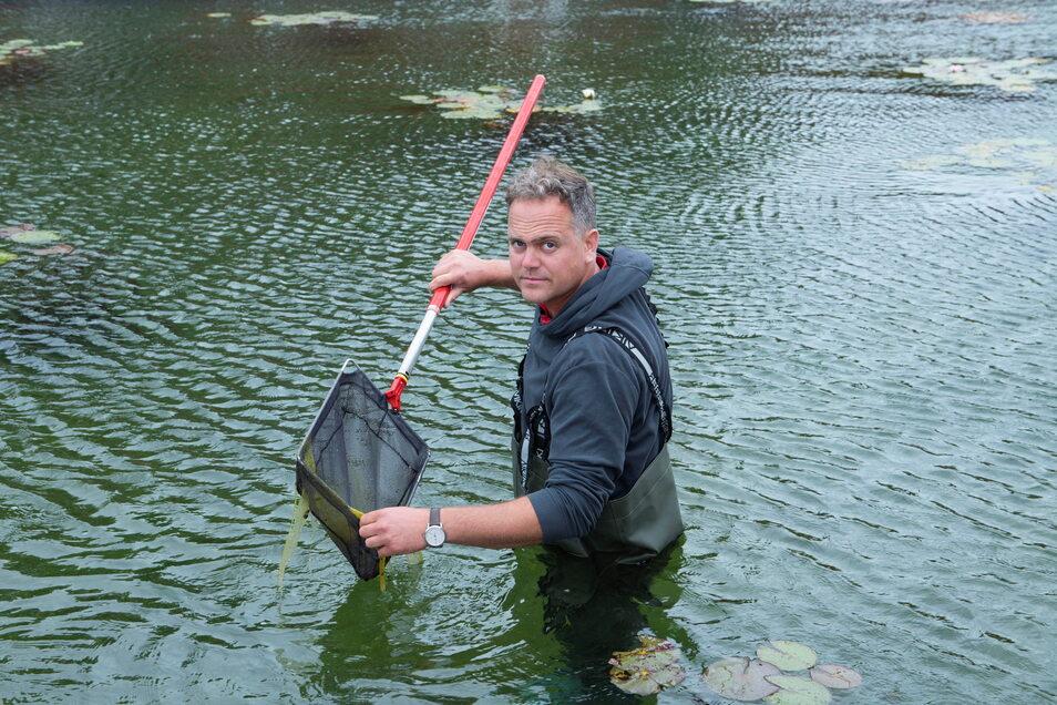 Auf Sauberkeit bedacht: Schwimmmeister Martin Lehmann fischt die Algen aus dem Regenerationsbecken. Am Reinigungsprozess wolle man im nächsten Jahr verstärkt arbeiten.
