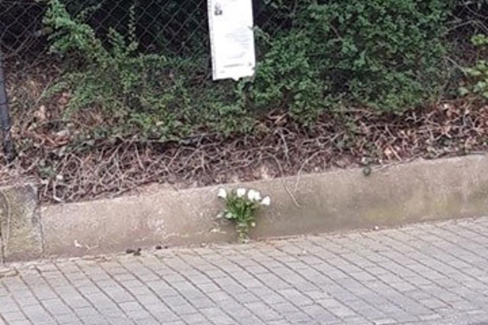 Gedenkplatz für Emil Schemmel in Heidenau.