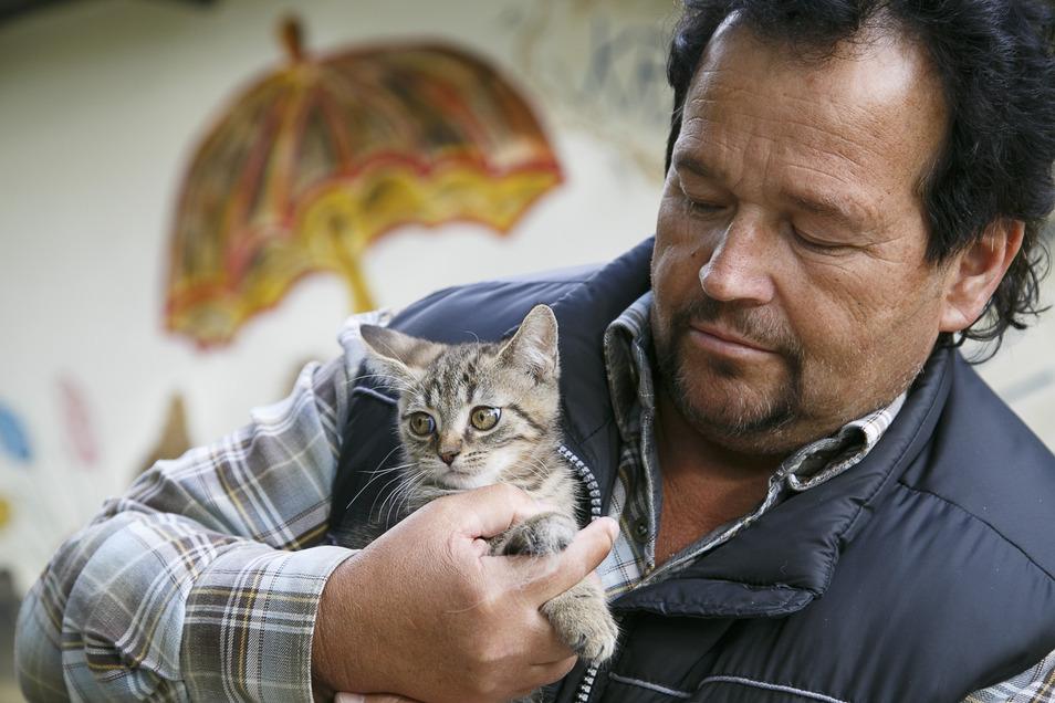 Unkontrollierte Vermehrung von Katzen verhindern - dafür plädiert auch der Leiter des Tierheims Krambambuli in Görlitz, Peter Vater.