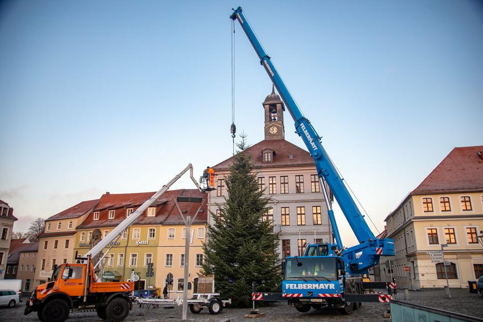 Wie gewohnt wurde der Weihnachtsbaum in Bischofswerda auf dem Altmarkt vor dem Rathaus aufgestellt.