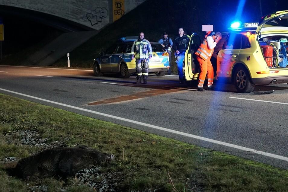 Am Montagabend ereignete sich auf der Westtangente in Bautzen ein Unfall zwischen einem Notarztwagen und einem Wildschwein.