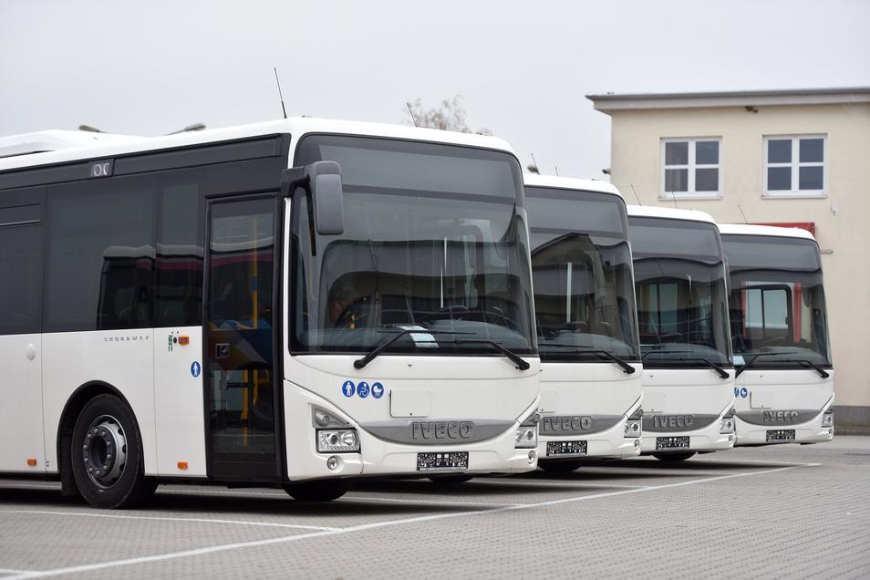 Auch mit diesen neuen Bussen fährt die KVG in und um Zittau. Sie soll bald nach einem neuen Fahrplan fahren. Der wird vom Kreis erstellt und sorgt für Ärger.