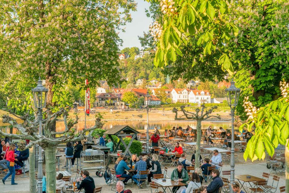 Zwar füllen sich Biergärten und Restaurants wieder, doch 80 Prozent der sächsischen Gastronomen geben an, durch die Hygieneauflagen nicht kostendeckend arbeiten zu können.