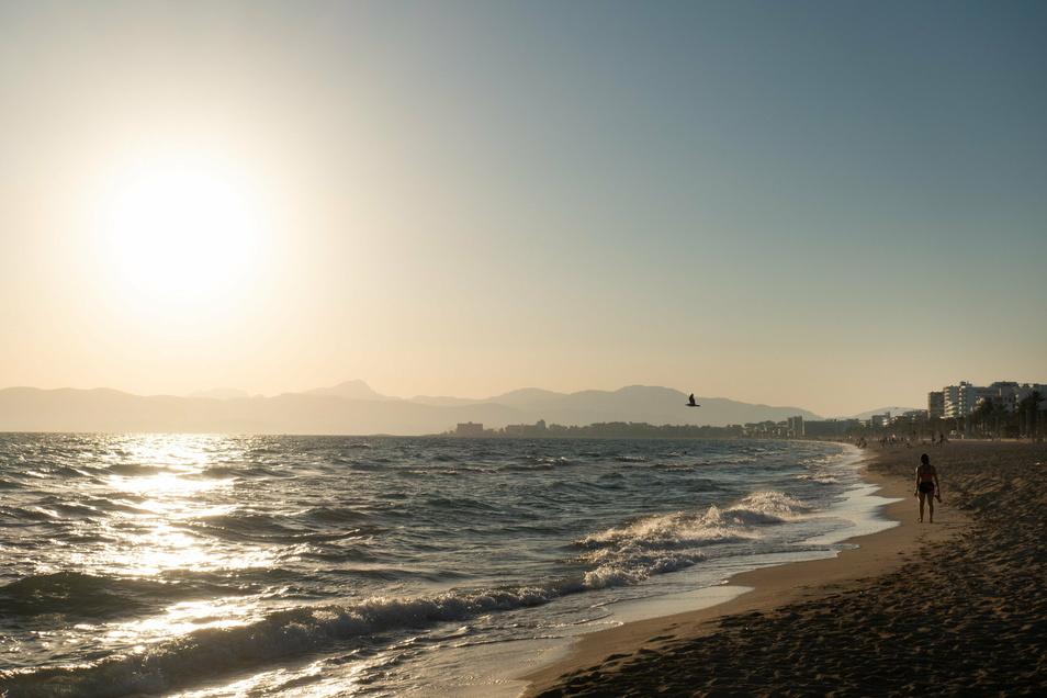 Auch wenn der Virus auf Mallorca weniger verbreitet ist als in Sachsen, führt an der Quarantäne kein Weg vorbei. Foto: dpa