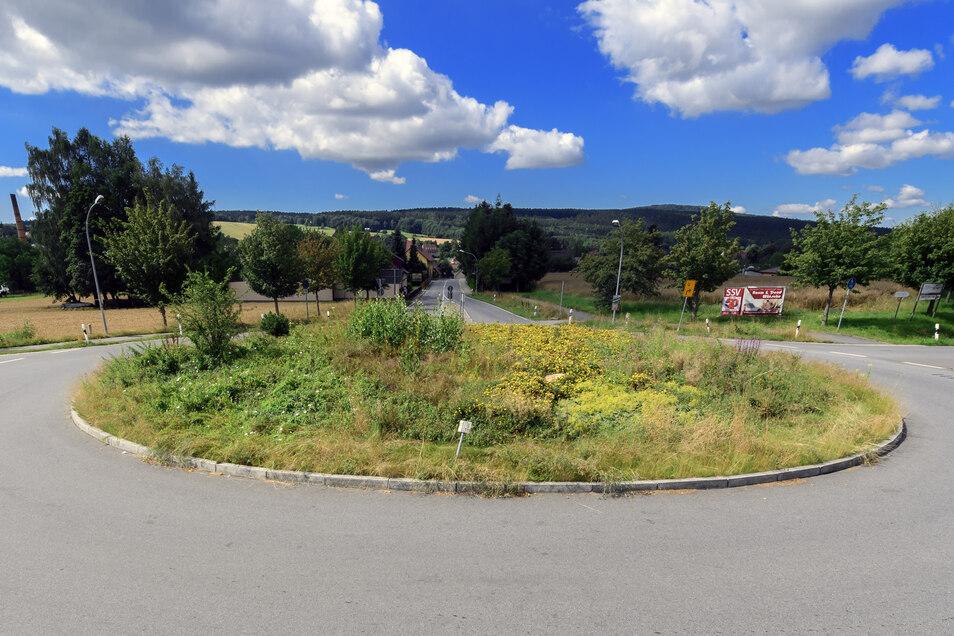 Wildpflanzen bewachsen den Kreisel an der Bautzener Straße in Neukirch. Regelmäßig wird deshalb eine Gefahr für die Verkehrssicherheit befürchtet.