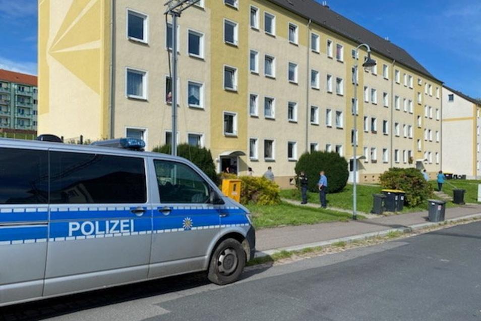 Durch Zureden ist es den Rettungskräften am Samstag in der Breuningstraße in Waldheim gelungen, eine Frau zu beruhigen. Sie hatte schreiend auf dem Fensterbrett gesessen.