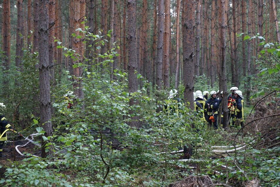 Um Waldbrände wie diesen im Landkreis Bautzen frühzeitig zu erkennen, sollen weitere Kameras in den Wäldern installiert werden.