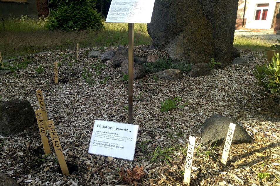 Dieser Findling erinnert an die Orte Heye III (1910-1948) und Heide (1949-1996). Vom frisch bepflanzten Rondell wurden zahlreiche Pflanzen gestohlen- Die kleinen Pflöcke markieren die Stellen, wo etwas fehlt.