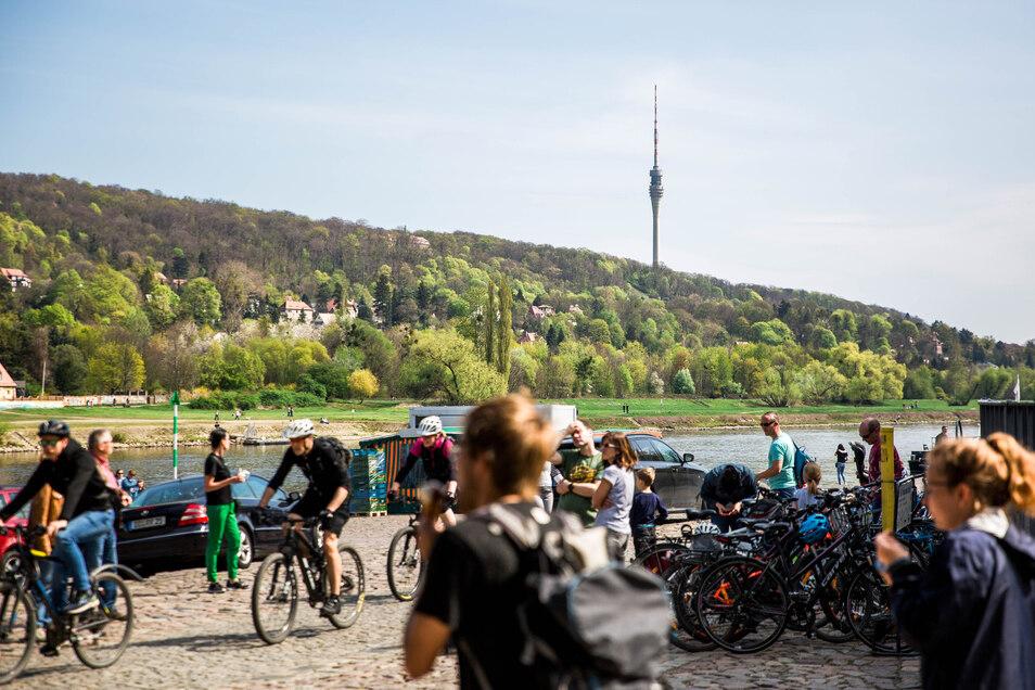 An den Elbwiesen rund ums Blaue Wunder waren am Wochenende viele Dresdner unterwegs.