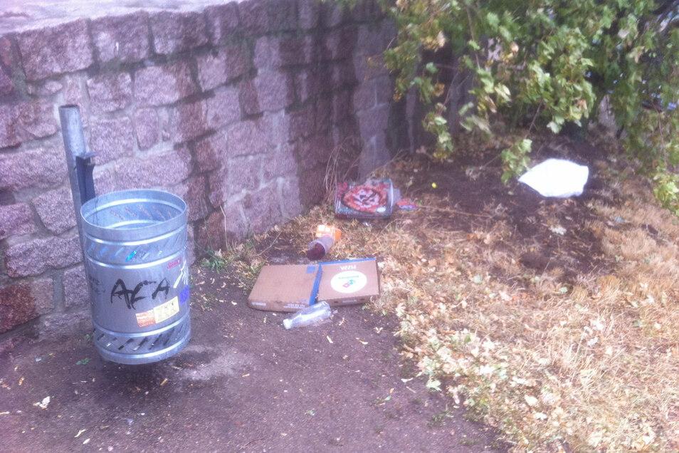 Kein ungewöhnlicher Anblick am Bismarckturm: Pizzaschachteln, Plastebecher und Trinkflaschen liegen wild verstreut neben einem Mülleimer.