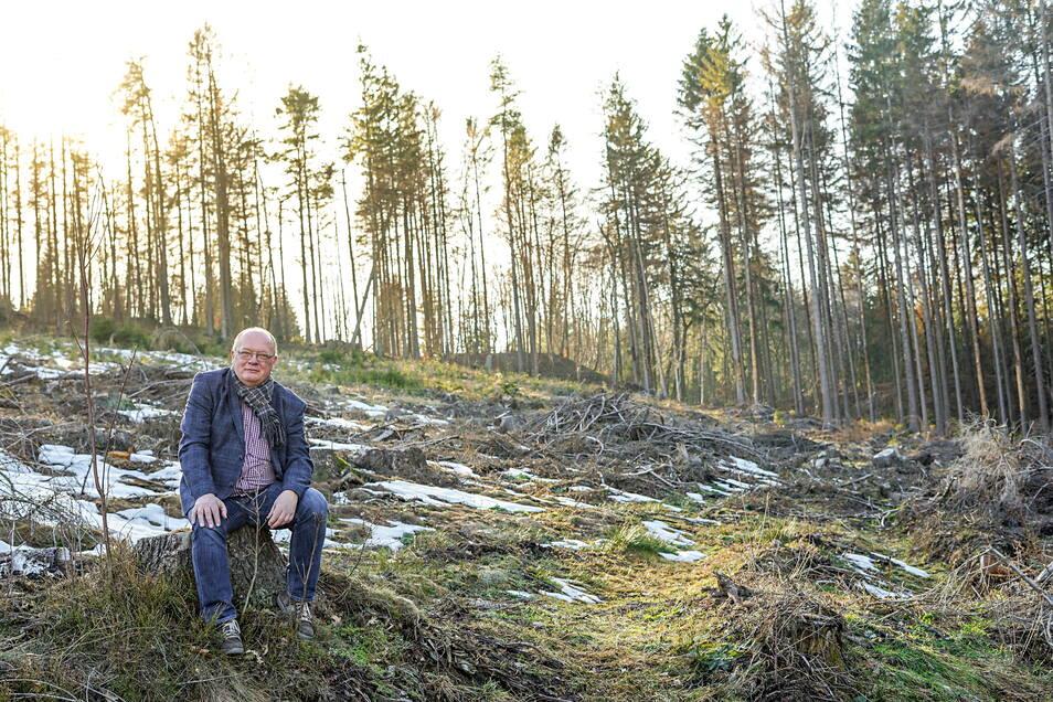 Wo Thomas Martolock 2019 noch vor einem kahlen Stück Wald saß, wachsen heute 1.500 Roteichen und eine Vielzahl Ebereschen. Möglich wurde das erst, nachdem mit schwerem Gerät der Waldboden auf die neue Bepflanzung vorbereitet wurde.