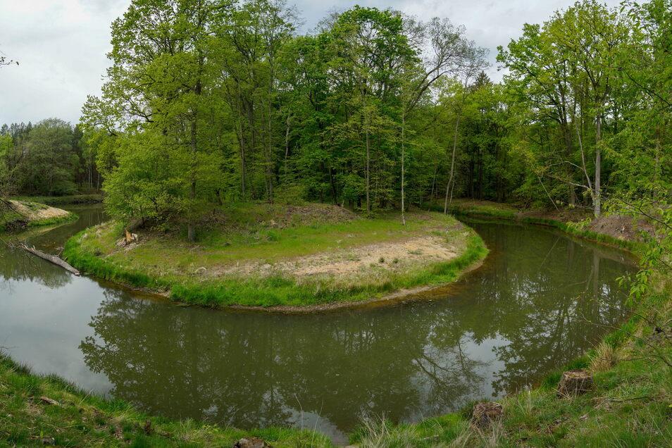 Am Mäander Lömischau hat die Spree ihr altes Bett wieder erhalten, die einst geschaffene Begradigung des Flusslaufes wurde geschlossen und ist nur als Hochwasserüberlauf erhalten geblieben.