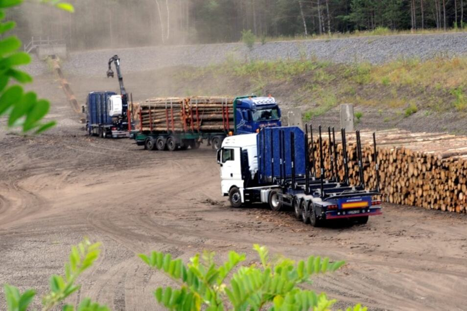 Ein Holztransporter nach dem anderen bringt Nachschub zur Einlagerung.