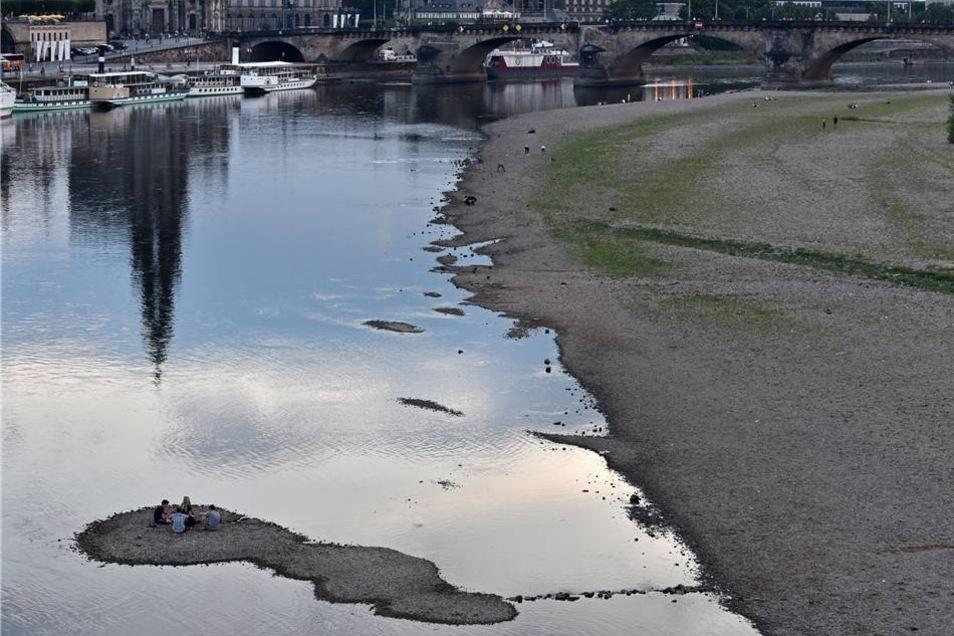 Obwohl kleine Bäche in Sachsen schon versiegt sind, rechnet das Landeshochwasserzentrum nicht damit, dass die Elbe austrocknet.