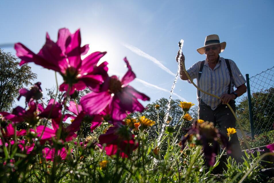 Gärtnern macht neben Arbeit auch Freude und ist für viele ein Ausgleich zum Arbeitsalltag. Besonders sehenswerte Gärten in Bautzen, Bischofswerda und Kamenz möchte Sächsische.de in einer Sommerserie vorstellen.