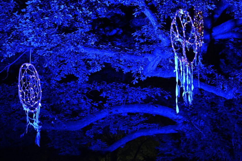 Viele selbstgebastelte, beleuchtete Traumfänger, Fabelwesen, Tiere und andere Motive hingen in den Bäumen.